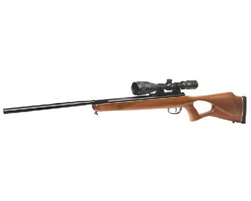 Benjamin Trail NP Hardwood .22 caliber Rifle