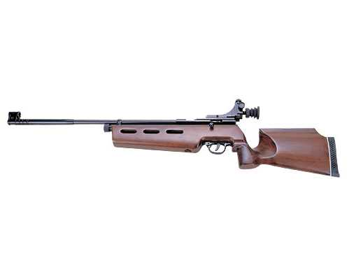 Industry Brand/Shanghai Airgun AR2078A Co2 Target Rifle, .22 cal